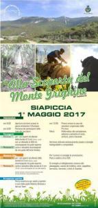 Eventi - Alla scoperta del Monte Grighine - Siapiccia - Oristano